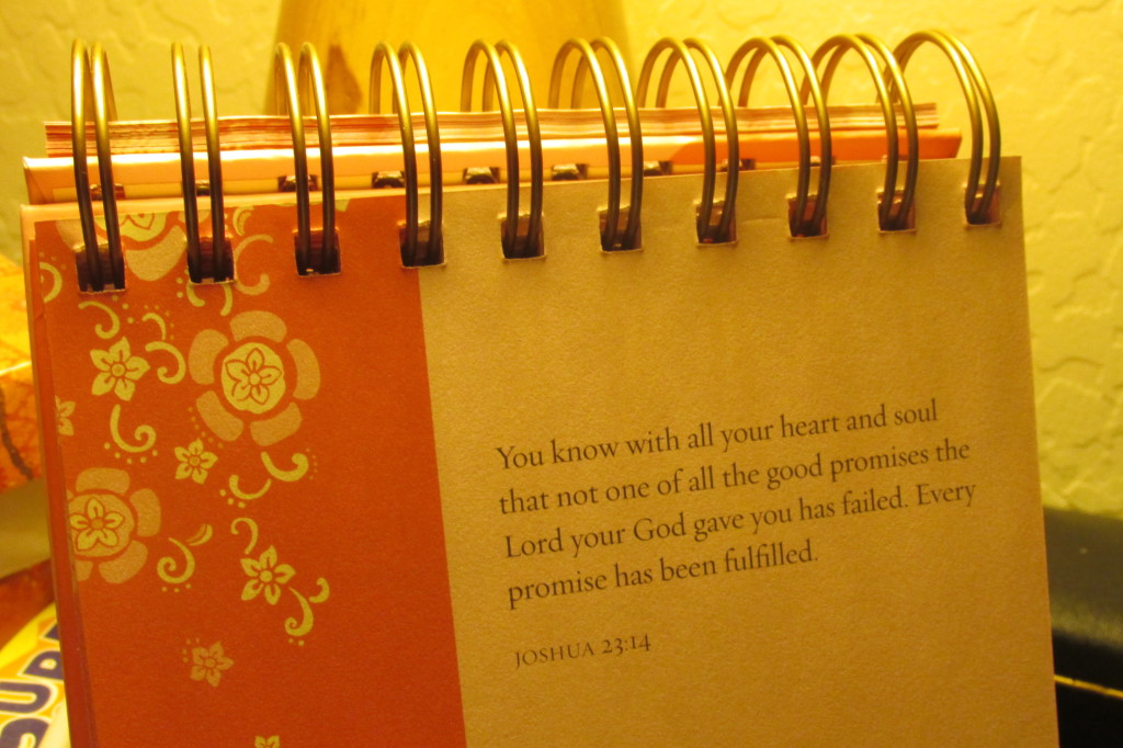 A friend sent me this little flip calendar with uplifting scriptures. I look forward to reading them every day.