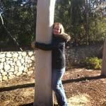 hugging a eucalyptus tree